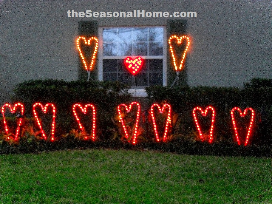 s_2010_front yard_valentine_night