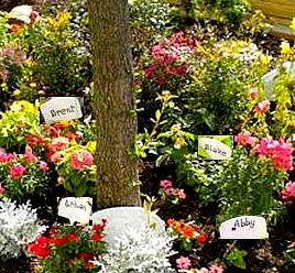 birthstone garden_outdoor new