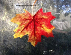 s_leaf in window