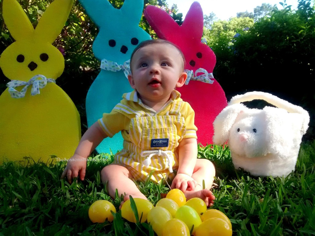 s_henry and yellow eggs 2